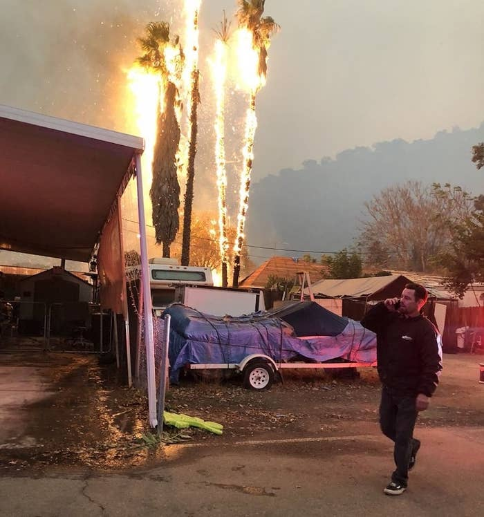 A palm tree ignites in the Casita Springs Mobile Home Park, as residents reconsider their decision to remain in their homes despite evacuation orders.