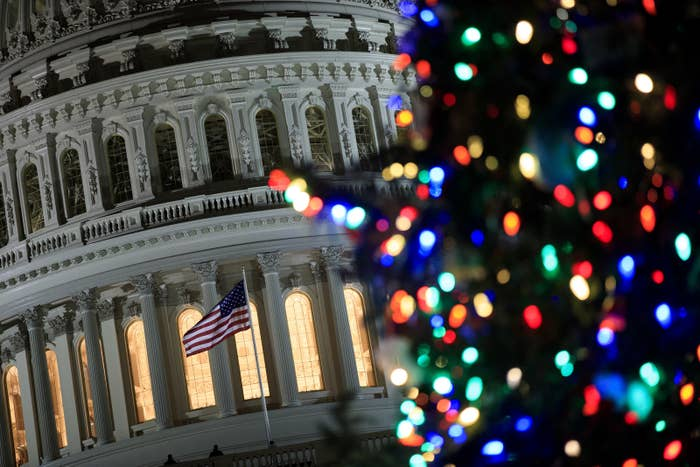 The US Capitol Christmas tree lighting ceremony on Capitol Hill. The tree is a 79-foot Engelmann spruce from Montana.