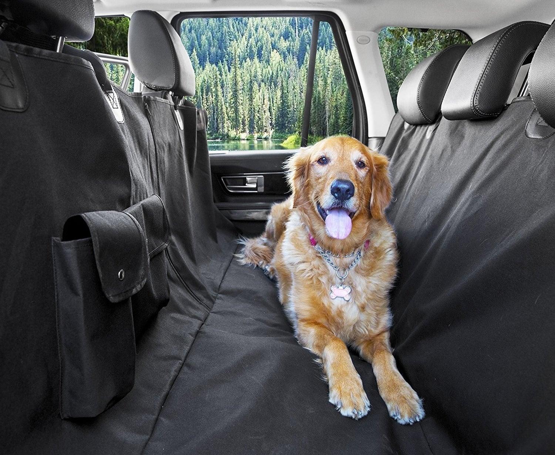 dog laying in car seat hammock