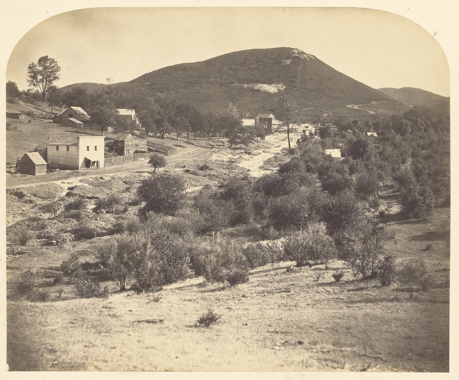 Mount Ophir, California, 1859–60. Photograph by Carleton Watkins.
