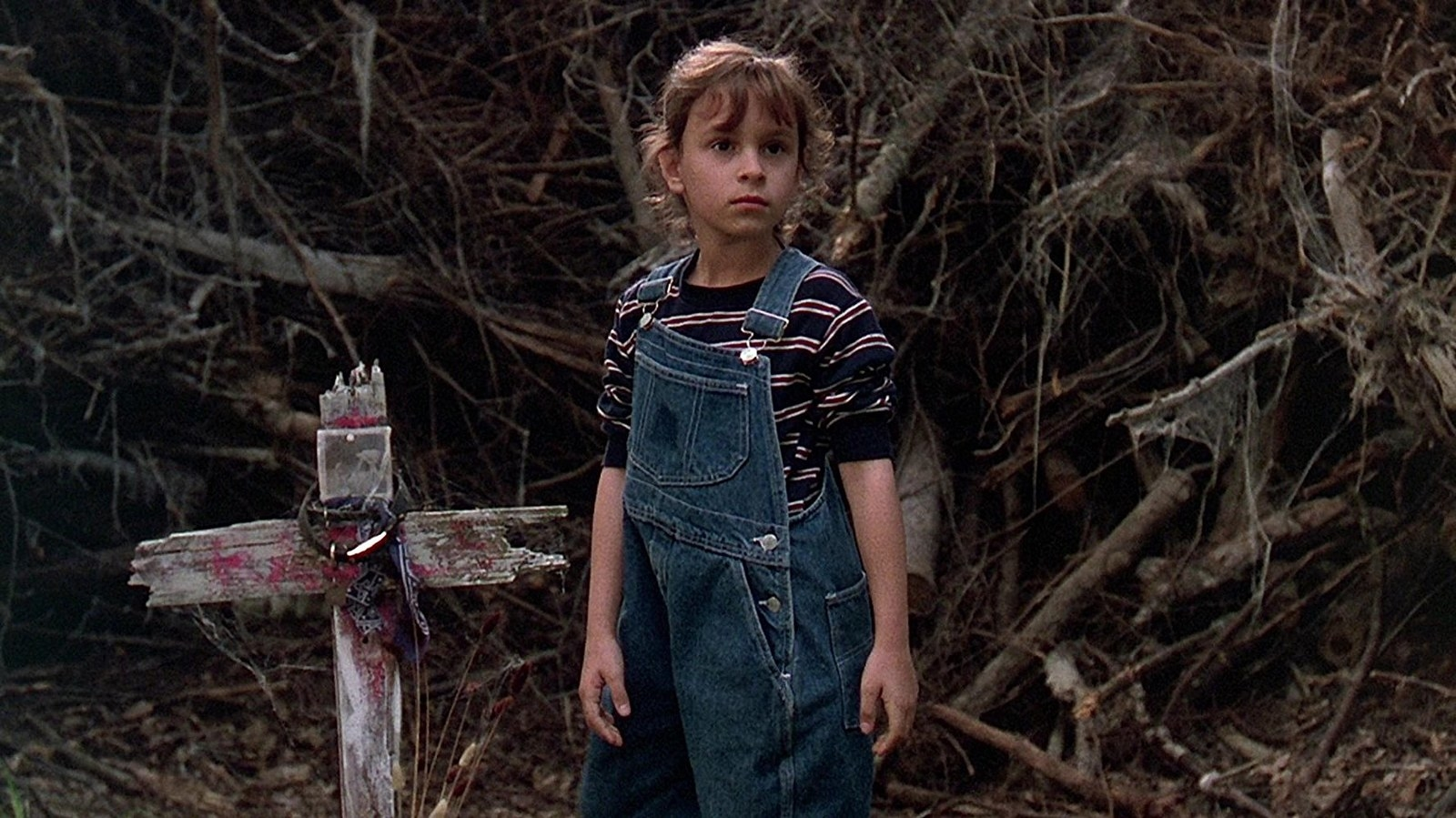 Premise Pet Sematary follows a doctor who moves his family out of the big city to the country There he discovers that they have moved near a pet cemetery that