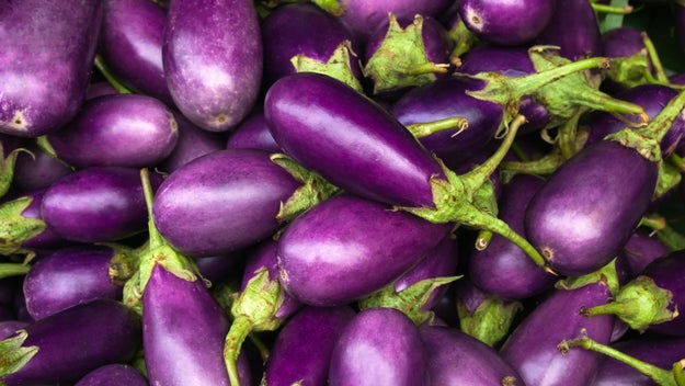 Eggplants contain nicotine.