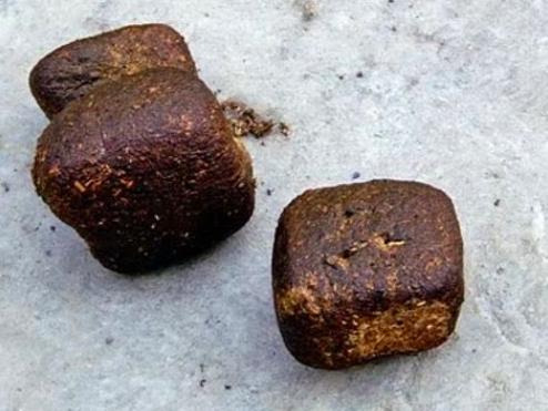 Wombats poop cubes.