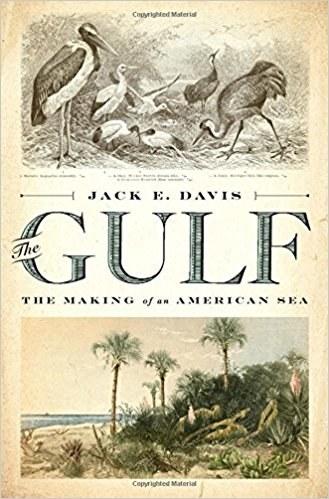 The Gulf: The Making of an American Sea, Jack Davis