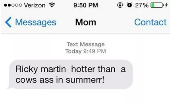 I believe, like this mom who sent this weird text to her son, that Ricky Martin is hot.