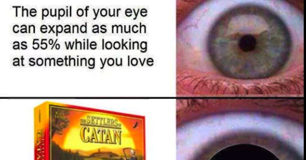 18 Pictures People Who Don't Play Settlers Of Catan Will Never Understand