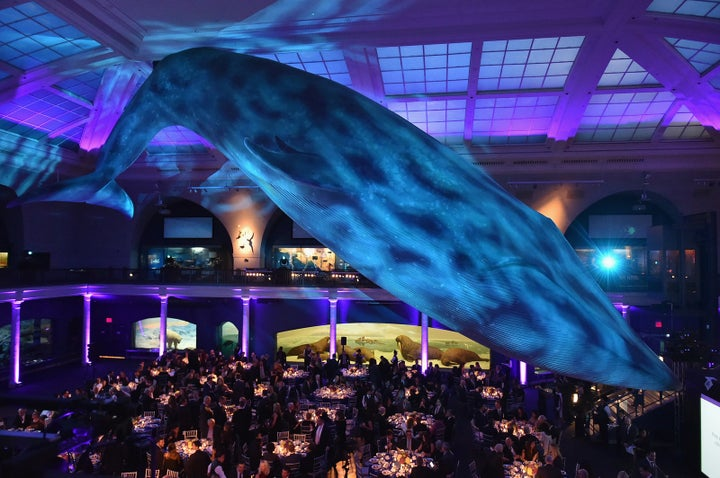 Scientists Are Calling On The American Museum Of Natural History To Cut Ties With The Mercers