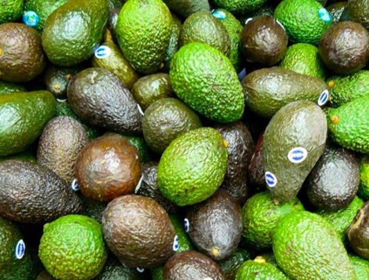 Avocados are berries.