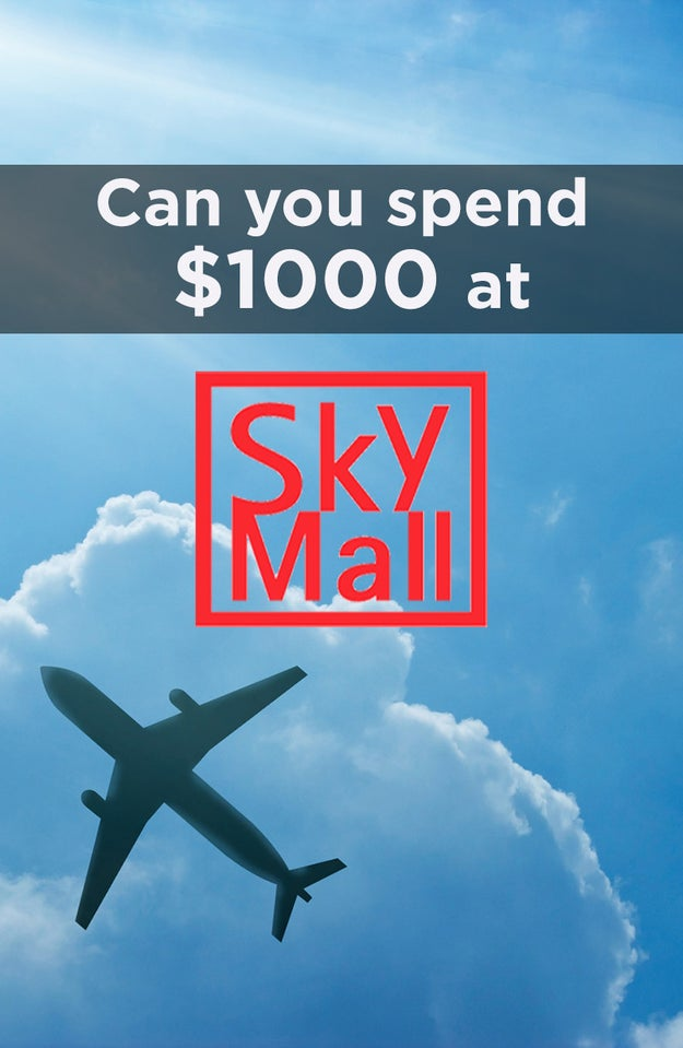 Can You Spend $1000 On SkyMall Products?