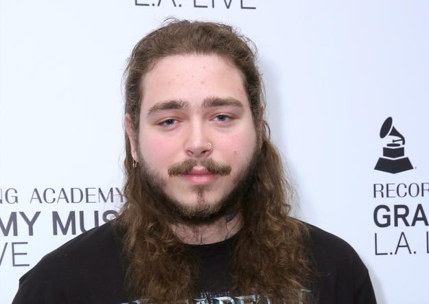 But! The most important question is, of course, what breed of dog does Post Malone's mustache look like???