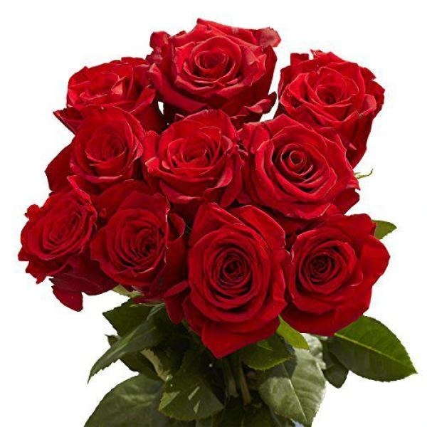 A bouquet of a dozen red roses