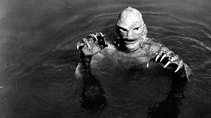 He went to a Universal Pictures studios and pitched an updated version of the film with the creature and the protagonist ending up together. Executives at the studio turned down his idea.
