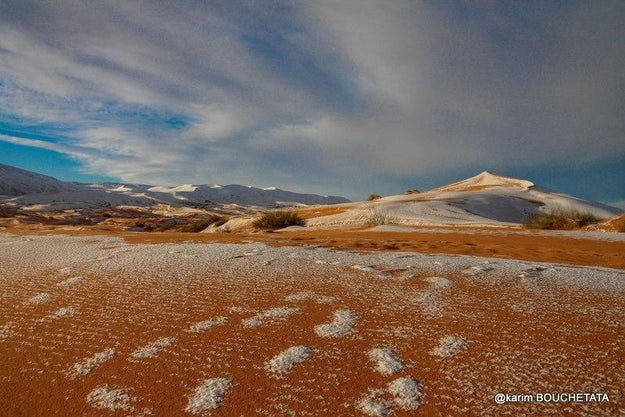 And when the snow melts, which Karim says only takes a few hours, the affect is equally breathtaking. Footprints remain as the ground cover evaporates.