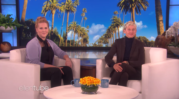 "Schumer's character, Renee, struggles with low self-esteem and ""wants to be pretty and feel the parts of life that open up to you when you're gorgeous,"" Schumer said in an interview with Ellen."