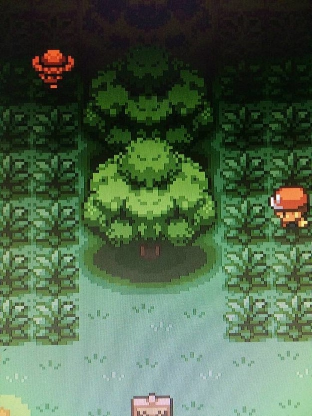 These trees in the Pokemon game looks like muscle guys flexing: