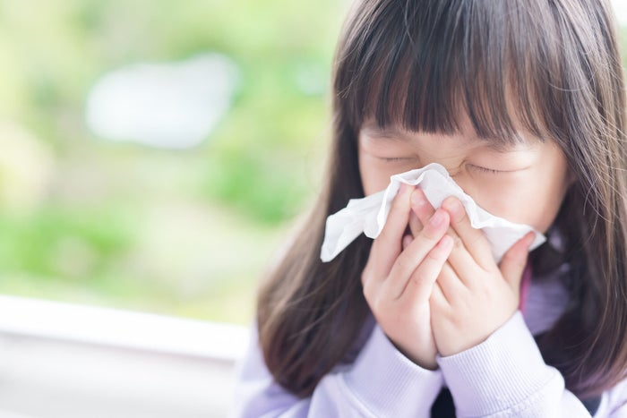 花粉症シーズンを快適に乗り切るための便利アイテムをご紹介します。