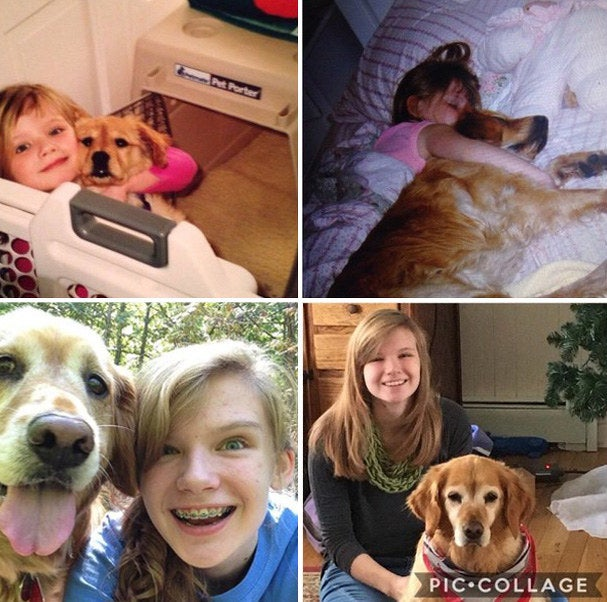 """""""She passed away July, 2017. First picture is spring, 2003; second is probably around 2005; third is summer, 2013; and the last is Christmas, 2016. Adopting her was one of my first memories. She was a QUEEN."""" – shannonw44e8d24aa"""