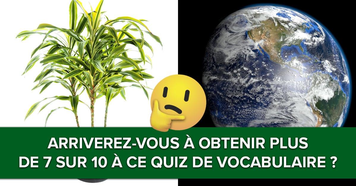 Arriverez-vous à faire plus de 7 sur 10 à ce quiz de vocabulaire?