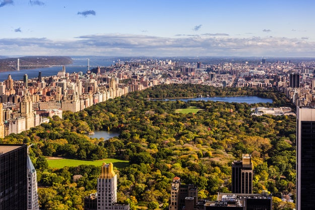 It cost more money to buy Central Park than it did to buy Alaska.