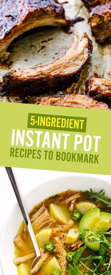 16 Instant Pot Recipes You Can Make With Just Five Ingredients
