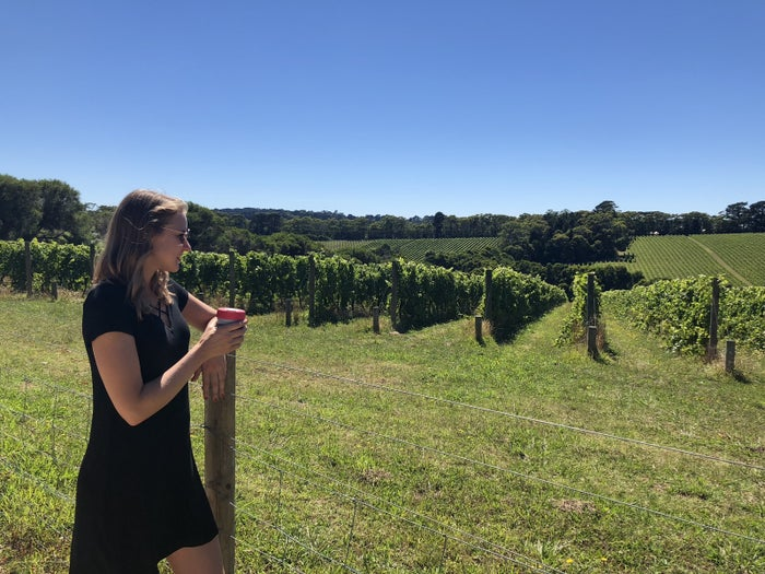 You can go on a guided tour which includes wine, cheese, and chocolate tasting, or just drive yourself around the region and stop in wherever takes your fancy.