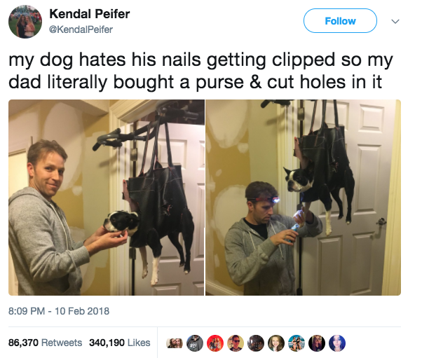 This dad, who bought a purse to clip his dog's nails: