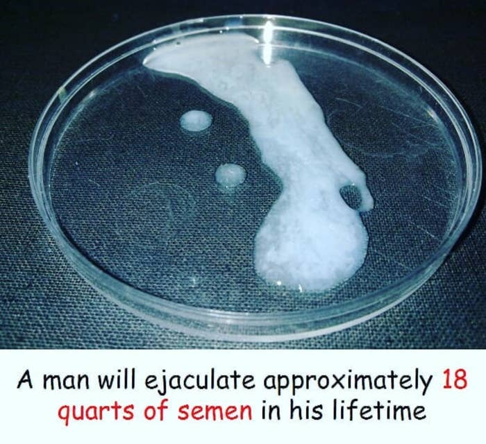 peeing after ejaculating kills sperm