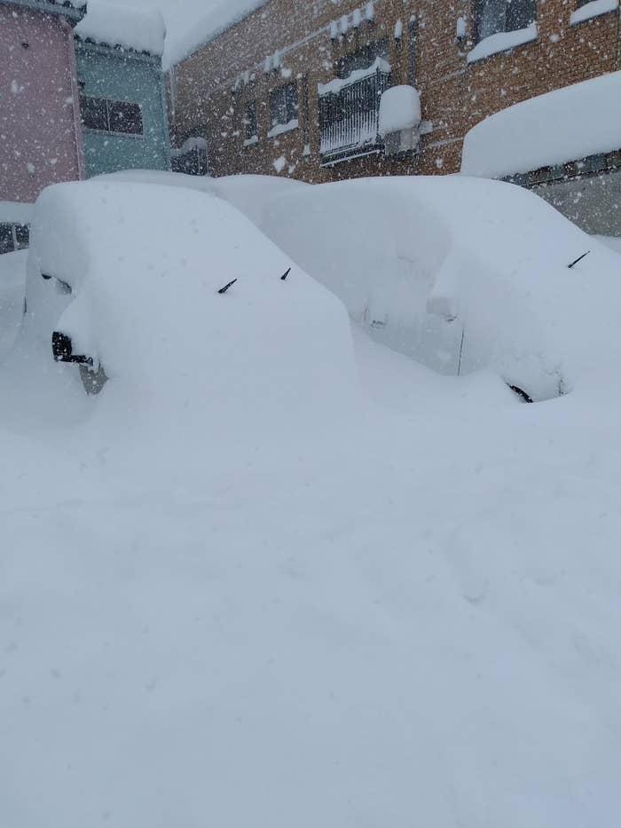 写真を撮影した福井市の自転車店「ミヤザキサイクル」の宮崎茂一さん(55)は、BuzzFeed Newsの取材にこう語る。「昨日の晩には何も積もってなかった車が朝方にはこんな状況になっていました。一気に積もっていて、除雪をしても追いつきません。車もそこらじゅうでスタックするなど、道路がまともに通れず、パニック状態です」「新聞もお昼に届きました。近くのコンビニも食べ物がほとんどないような状況で、今後も降り続くときいて食料が心配です。屋根の雪も取らないと潰れるのではないかと不安になっています」