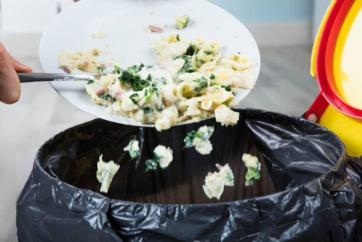 Todo aquel que eche restos de alimento en la basura, será multado. Cada hogar, al momento de desechar comidas y alimentos, debe encargarse de las técnicas de reciclaje y composta correspondientes.