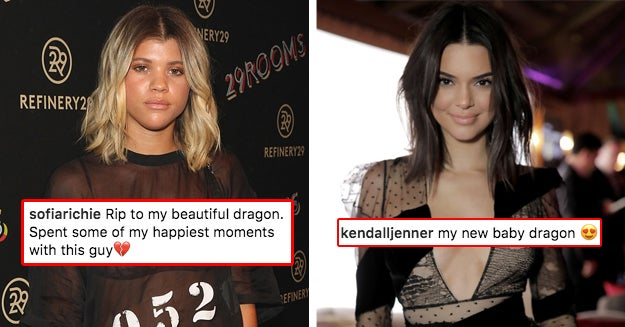 People Think Kendall Jenner Shaded Sofia Richie Again And It's Pretty Savage