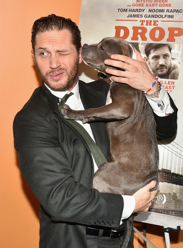 In case you're for some reason not (I'm sorry), he's a fantastic actor and a passionate dog person.