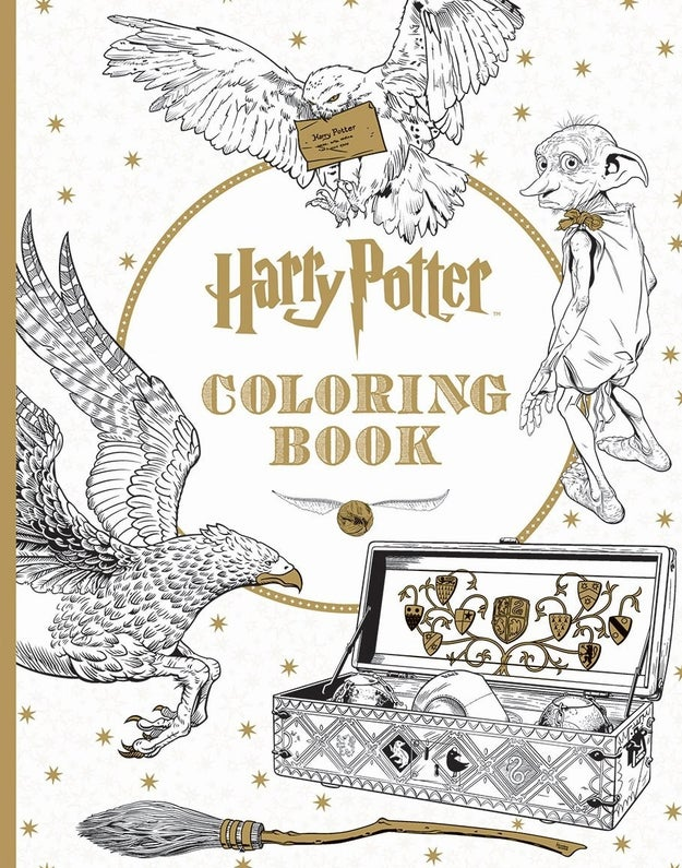 A colorable look at Harry Potter for anyone who wished Harry's hair was purple and Hedwig was green.