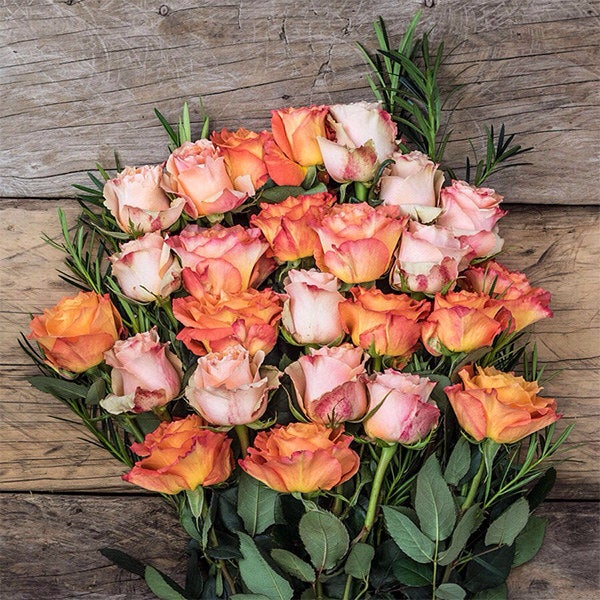 ICYMI, red roses are out and sunset roses are in. SenseEcuador provides premium quality roses grown in the eco-friendly highlands of Ecuador. They're Fair Trade Certified and ship free anywhere in the U.S.