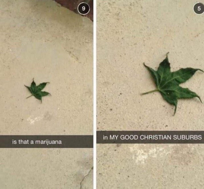 "LEFT: ""is that a marijuana"" RIGHT: ""in MY GOOD CHRISTIAN SUBURBS"""