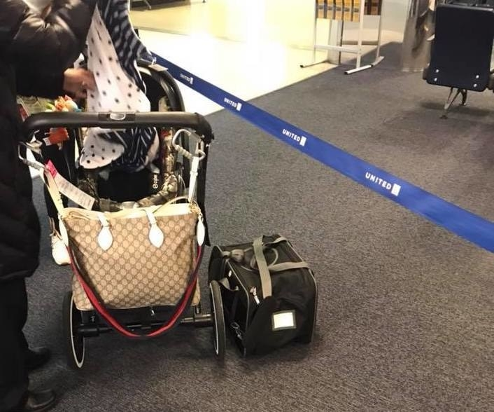 United to use tags for pet carriers after dog death