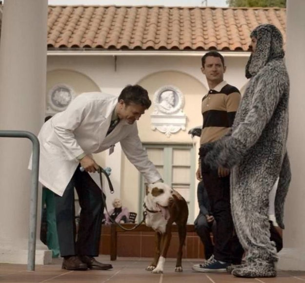 Champion also made a cameo on Wilfred.