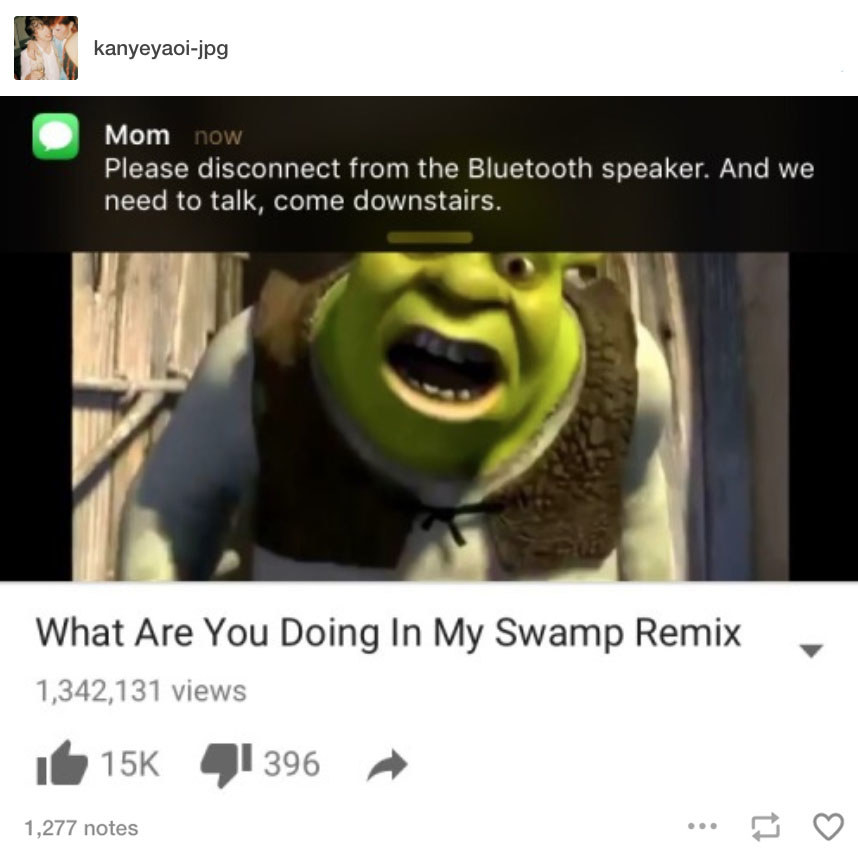 The 100 Funniest Shrek Jokes In The History Of Humanity