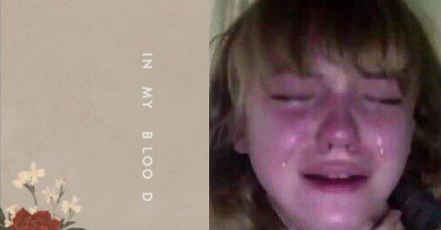 Shawn Mendes New Single In My Blood Is...