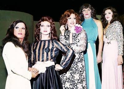 Documentário de Lufe Steffen apresenta histórias das noites gays em São Paulo nas décadas de 1960, 1970 e 1980. Fazendo uma viagem no passado, os personagens mostram as histórias das dançarinas e transformistas que se apresentavam nas famosas casas noturnas que marcaram época e tudo o que elas tiveram que passar, como a imposição da ditadura e a famosa explosão da Aids.