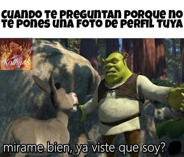 27 Ogrorosos Memes Que Vas A Amar Si Eres Fan De Shrek