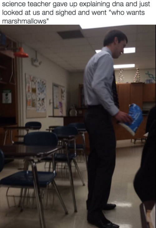 This science teacher who needed a little snack break: