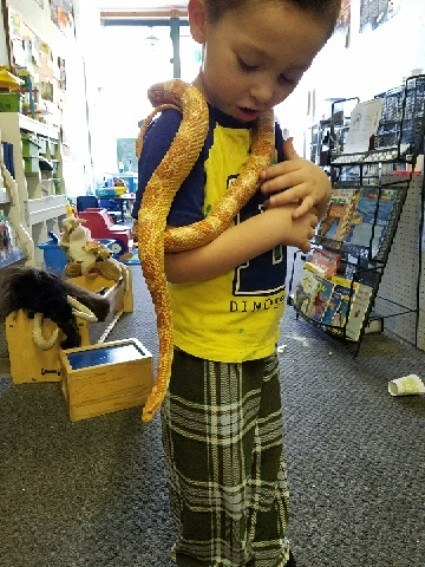 Severus Snake