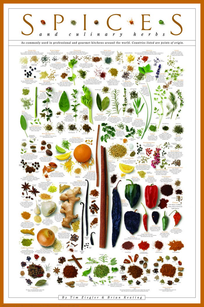 The poster, with images of spices, their names, and notes about them