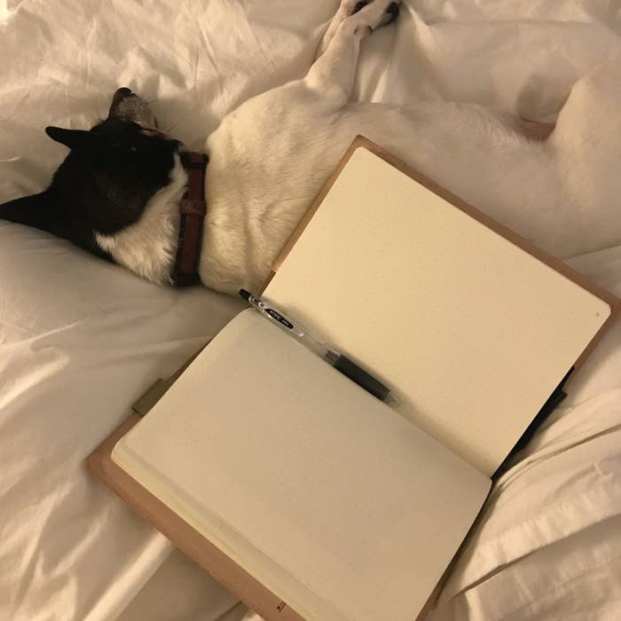 Here's Everything I Learned From Doing Morning Pages Every Day