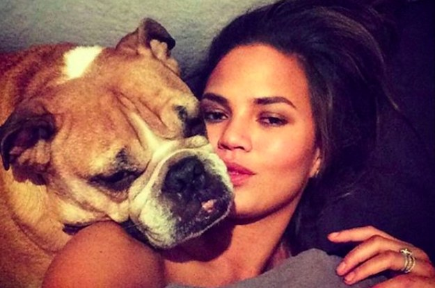Chrissy Teigen's Dog Died And She's Paying A Heartwarming And Funny Tribute Online