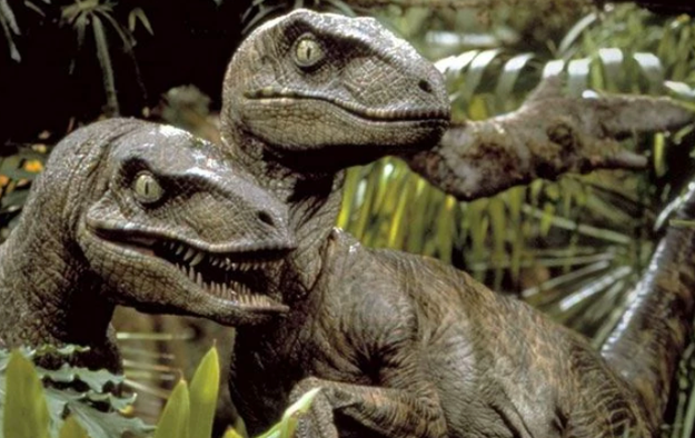 The sound of the velociraptors in Jurassic Park is actually a recording of two tortoises having sex on a loop.