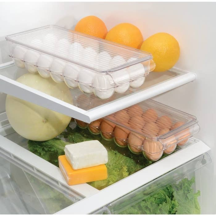 look inside fridge with clear egg cartons for storage