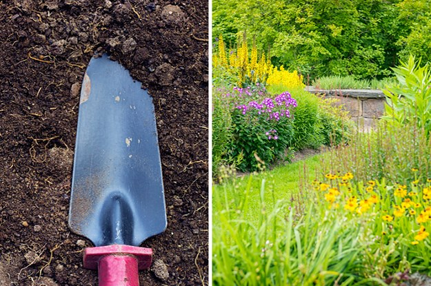Build A Garden To Get Your Exact Personality Type
