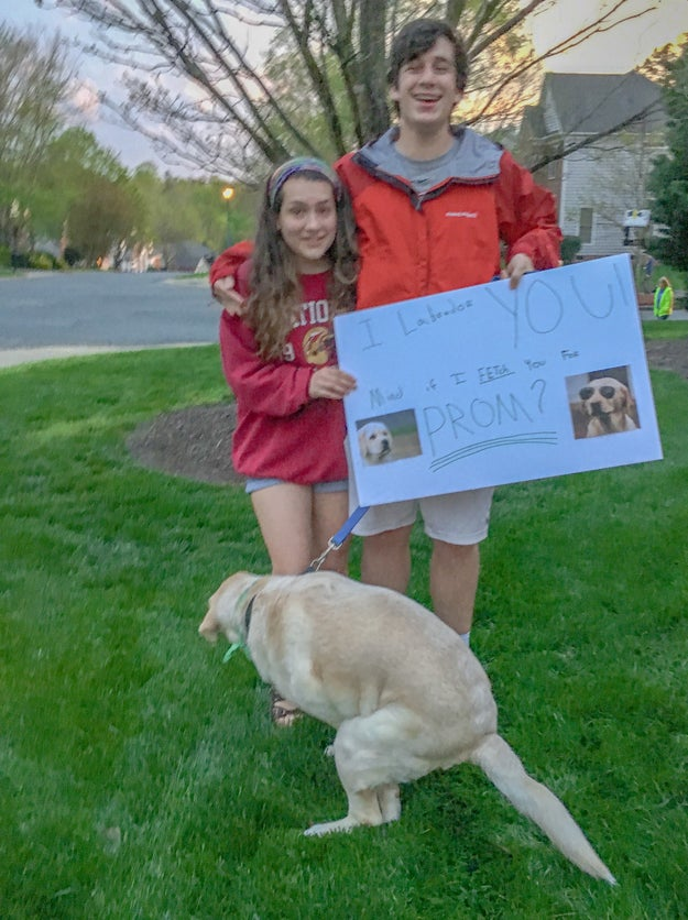 And finally, the dog promposal pic that truly means everything to me. 💖💖💖