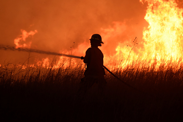 Dozens Of Homes Have Been Destroyed In Deadly Wildfires That Are Now Larger Than New York City